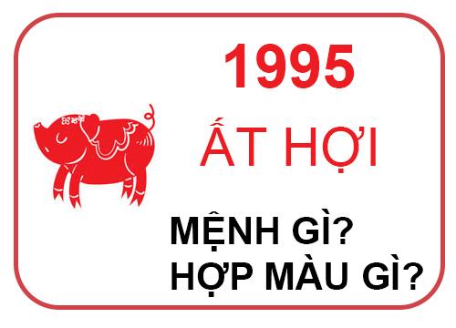 1995 menh gi