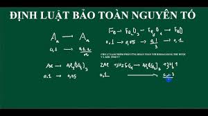 dinh luat bao toan nguyen to