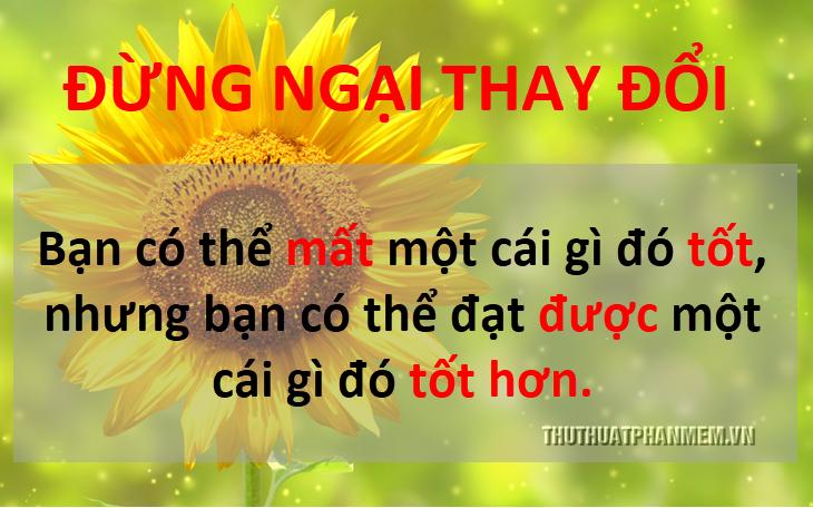 stt hay cuong song 6