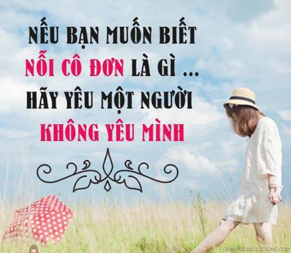 stt hay ve tinh yeu don phuong